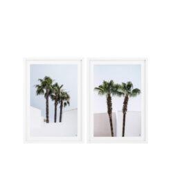 Набор из двух постеров PALM TREES