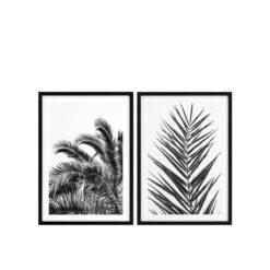 Набор из двух постеров PALM LEAVES
