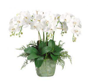 Искусственные цветы Фаленопсис\Па́поротник