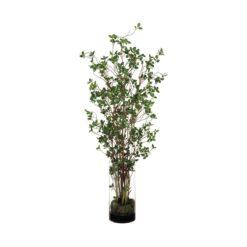 Ветви в стеклянной вазе
